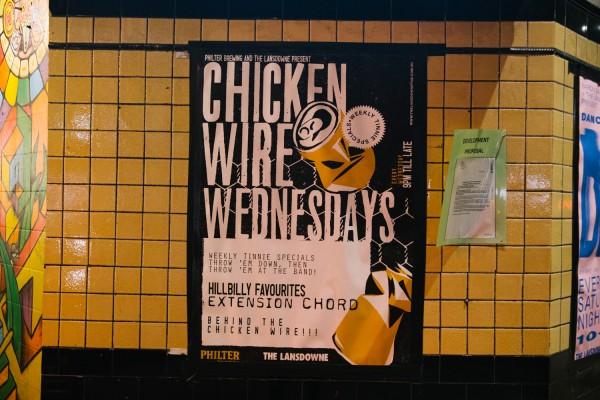 Chicken Wire Wednesday photo 3