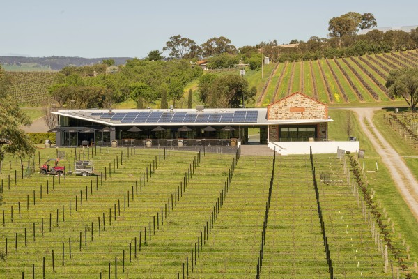 Angove Organic Ground to Glass Experience photo 3
