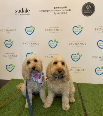 RSPCA VIP Doggie Fundraiser at The Exchange Hotel Balmain photo 16